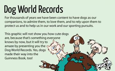 Größer, älter, weiter: die Hunde Weltrekorde