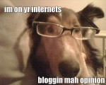 Hund Blog