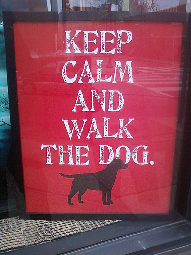 keep cam and walk the dog / lustige Werbespots - Longchamp