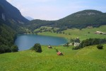 Die Schweiz - liebliche Landschaften, verdorbene Geschmäcker?