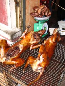 Hundefleisch China