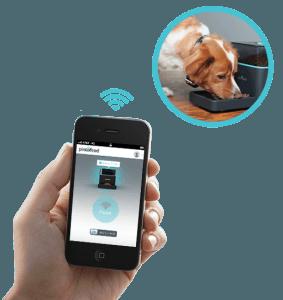 Den Hund füttern per Smartphone