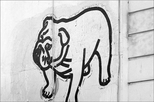 Hunde Blogger oder Graffitikünstler?