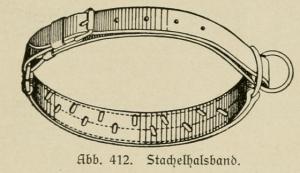 Stachelhalsband