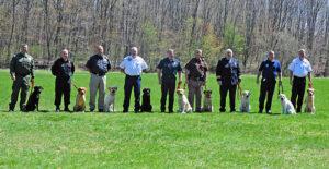 Hundetrainer werden - wer wird die Ausbildung schaffen?