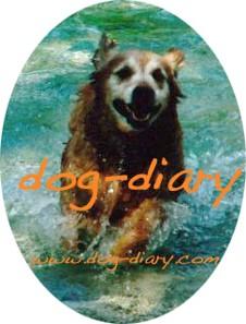Dog Diary, das virtuelle Hundetagebuch