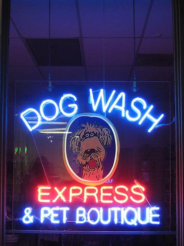 Hunde baden im Hundewaschsalon