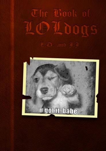 Dog Meme – dem Hund in den Mund gelegt