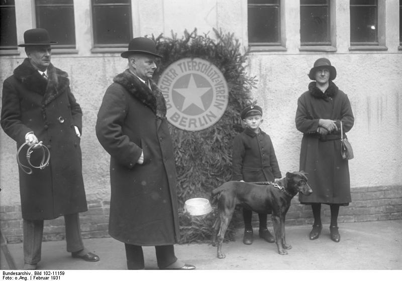 Deutscher Tierschutzverein