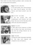 Buch über Hunde