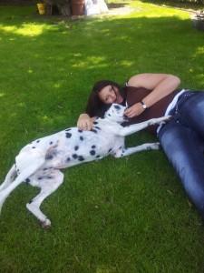 Dalmatiner mit Frauchen im Gras
