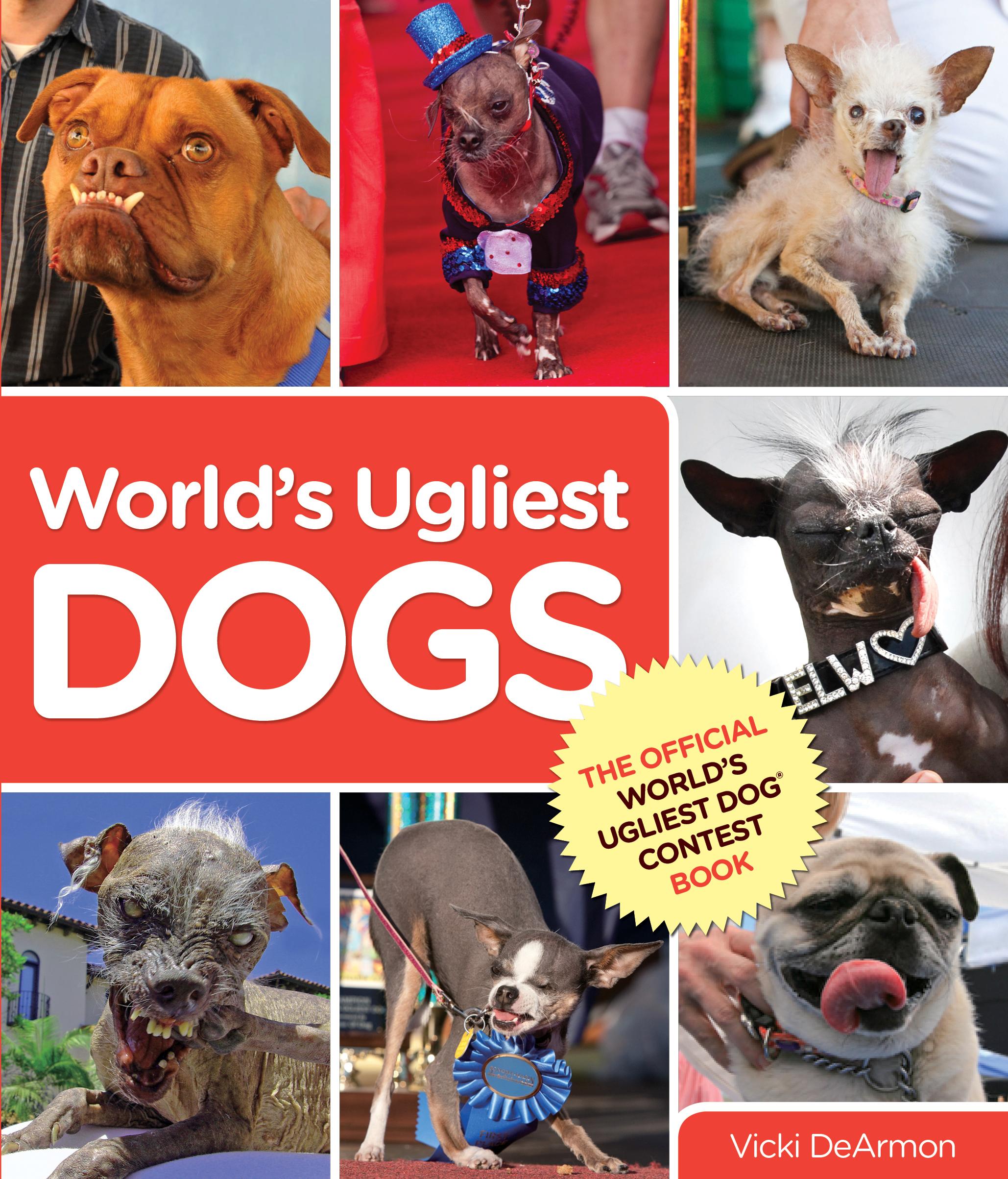 Ein hässlicher Hund - das Buch