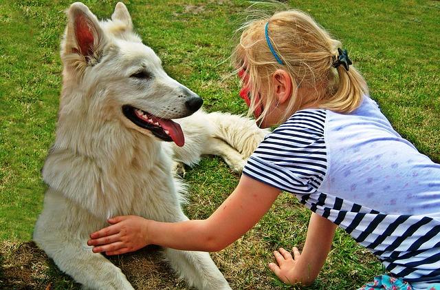 Hunde sind auch nur Kinder
