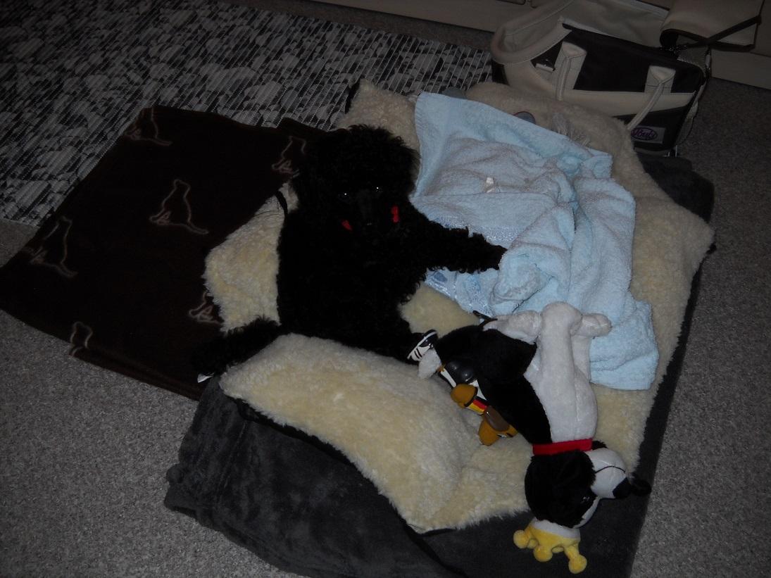 Tino mit seinen ersten Geschenken