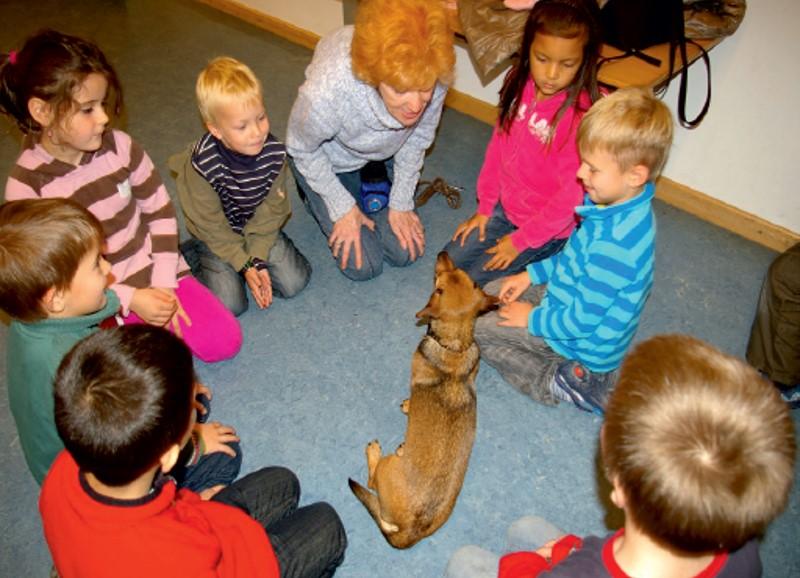 streichelbande im Kindergarten