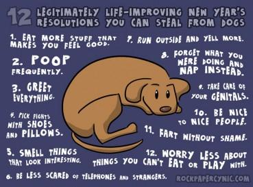 Was Du von Hunden lernen kannst, um Dein Leben zu verbessern