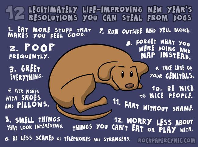 Neujahrsvorsätze vom Hund lernen