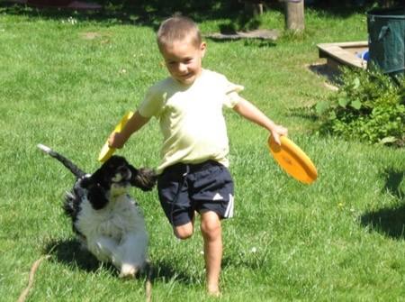 5 Hund rennt mit Kind um die Wette