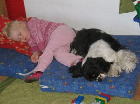6 Hund und Kind schlafen auf Matratze
