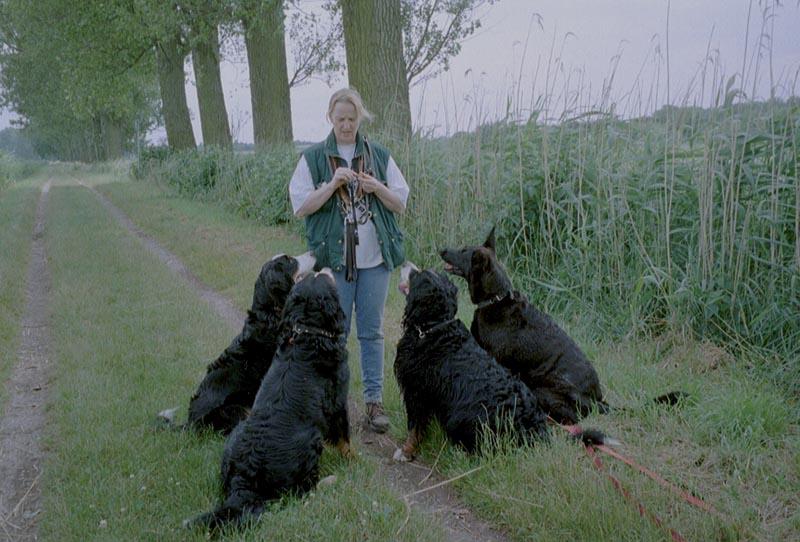 Beata Petry mit ihrem Hunderudel