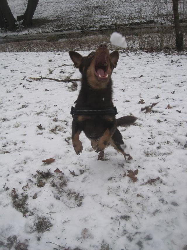 Lancashire im Schnee