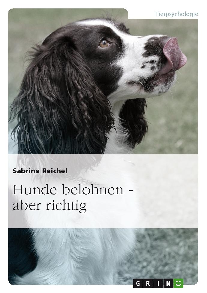 Buchvorstellung: Wie Hunde lernen