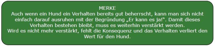 merke2