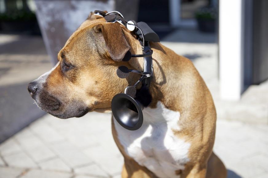 no more woof headset alt