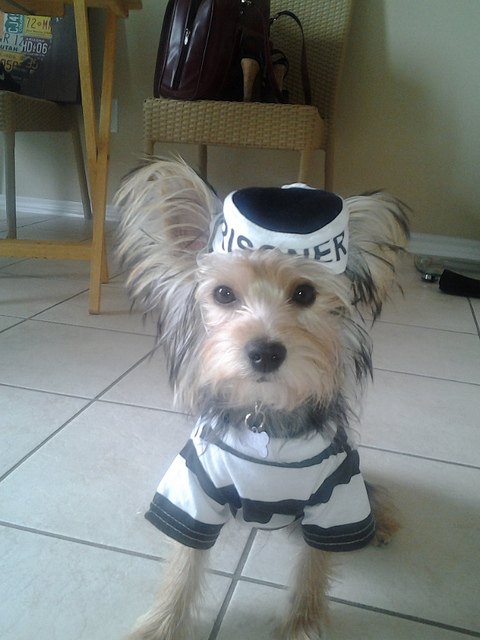 """Prison Dog Costume"" by Pets Adviser"