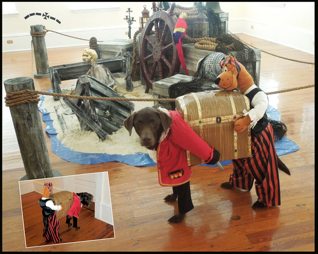 """Scooby Doo Costume for Dogs"" by Pets Adviser"