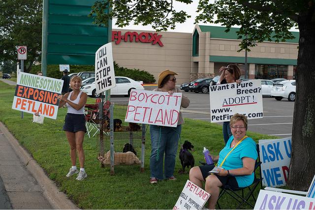 Proteste gegen Wühltischwelpen und Puppy Mills