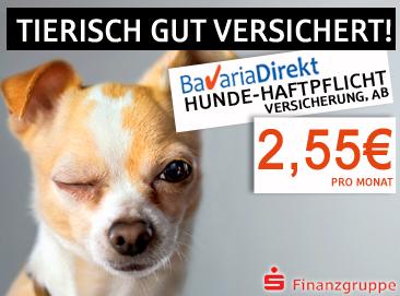 Hunde-Haftpflicht-Versicherung
