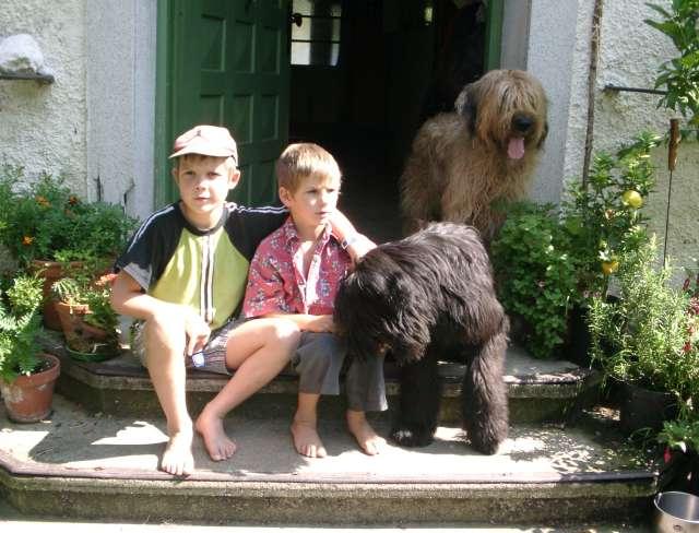 Hundekinder mit Briard