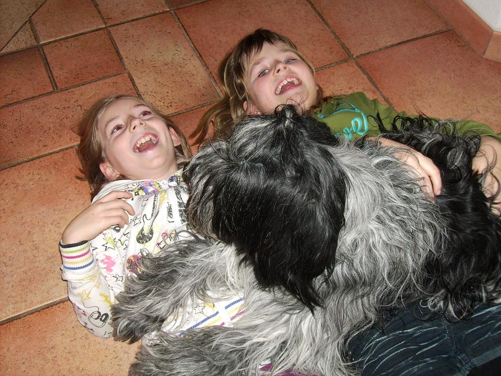 Schapendoes mit zwei Kindern auf dem Boden