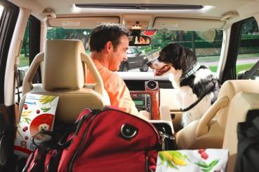 Sommeraktion – Autohöfe mit Spieleparcours für Hunde!