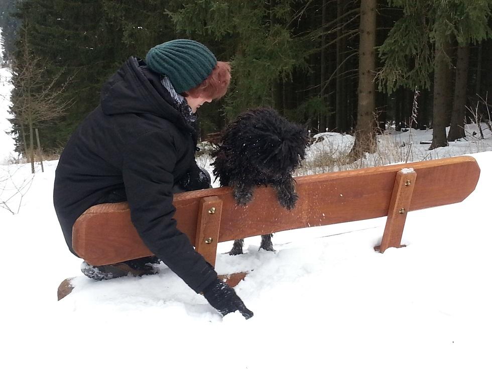 Schnee und Puli Hund