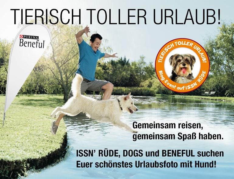 Teaser Mann Hund See Sprung