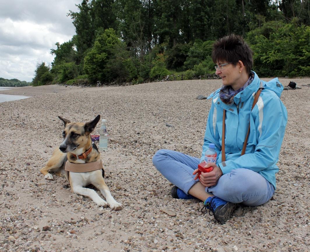 Telmo 7: Telmo und Antje sehen zu wie andere Hunde im Rhein baden