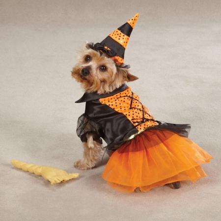 Hunde Kostüm Pinzessin für Halloween