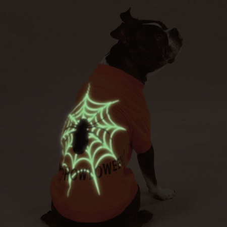 Hunde Kostüm mit Spinne für Halloween