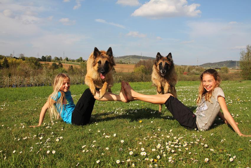 Belgischer Schäferhunde mit Kindern auf der Wiese