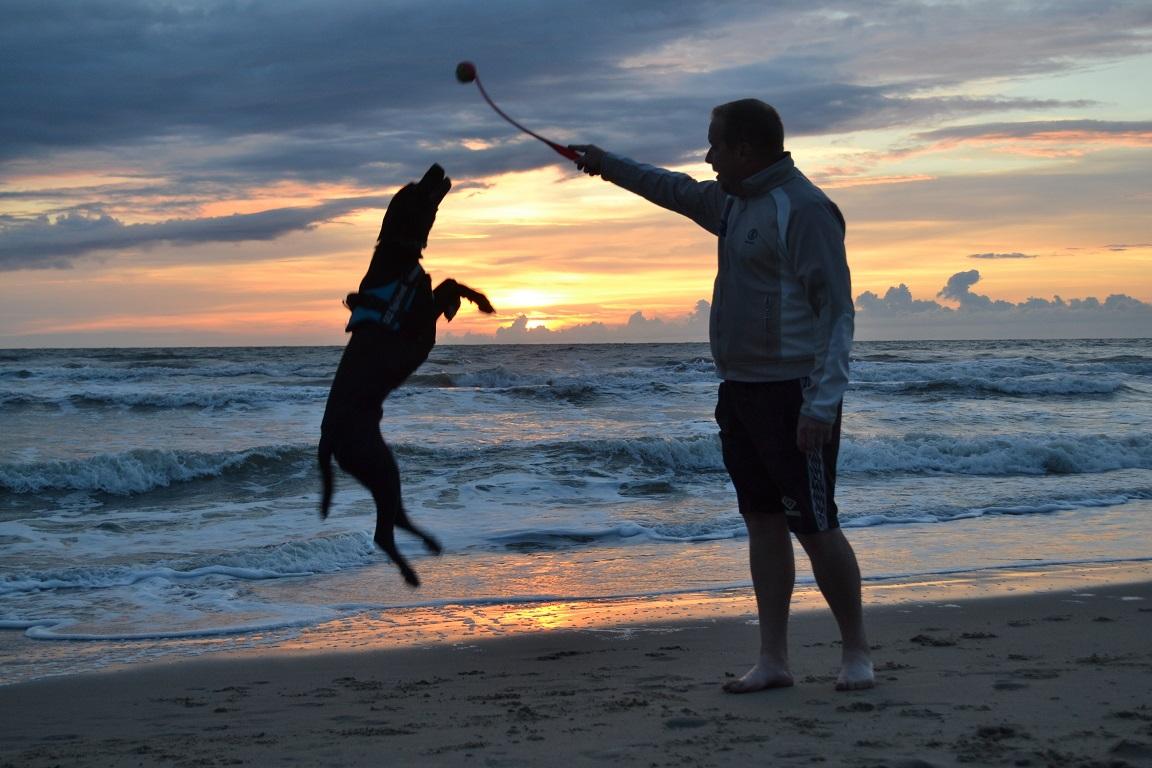 Hund und Mann am Meer