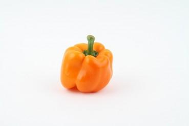 Wie viel Gemüse kann ein Beagle auf dem Kopf balancieren?