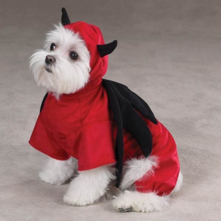 Hunde Kostüm Teufel für Halloween