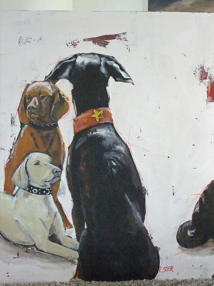 Hunde Bild