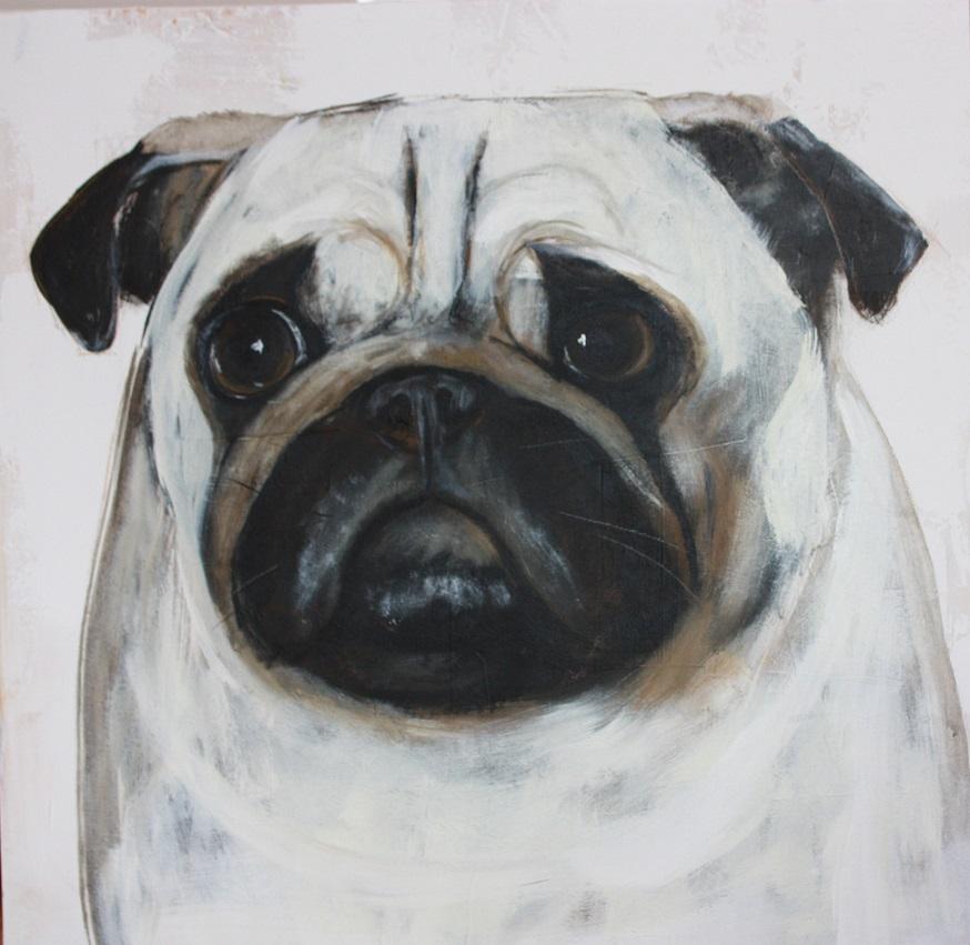 Herr Schröder Hundebild