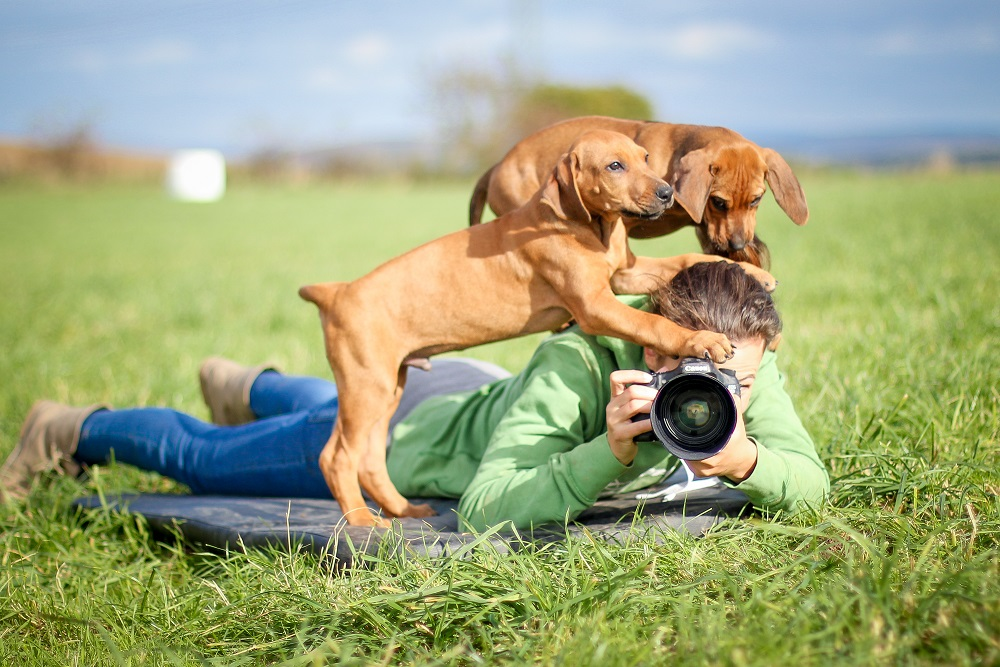 Hund und Tierfotografin