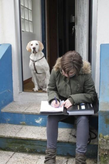 Tierpsychologie – was ist das?