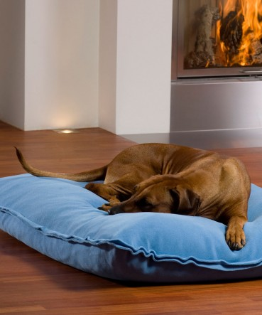 Trends bei Hundebetten