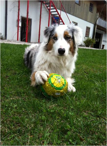Coco mit Fifa Ball